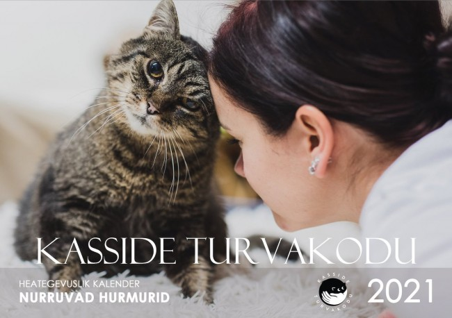 One of many fundraising *kalendrid* published by animal shelters (*loomade turva/kodud*) in Eesti. This one features whiskered *kaane/tüdruk* (cover girl) Maali. She is a *triibik* – with *triibud* (stripes), having the tabby stripe pattern coat type. Photo: www.kassideturvakodu.ee