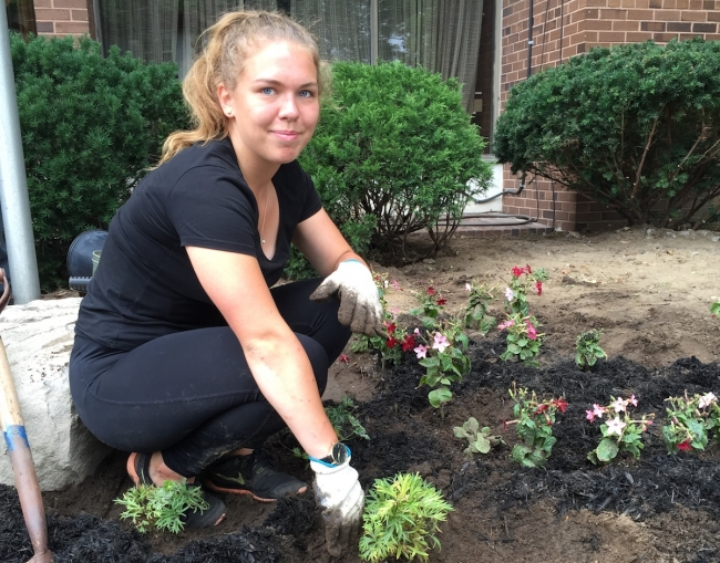 Youth volunteer Agnes Malve from Estonia planting flowers in front of the Toronto Estonian House. Agnes was a camper at Jõekääru summer camp and is here until mid-August. Photo: KM (2017)