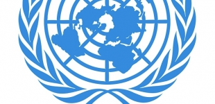 Estonia aspires to membership in UN Security Council. Why?