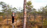 Take a Hike!: Experience Estonia on Foot Through its Walking Trails